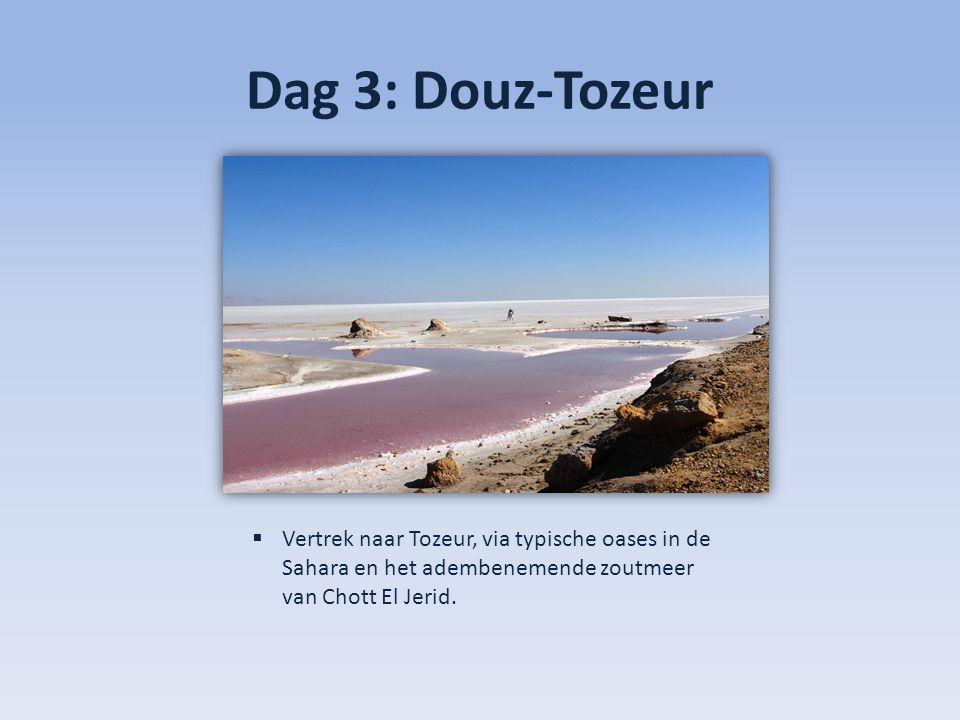 Dag 5: Tozeur-Djerba  Diner en overnachting in hotel SENTIDO Djerba Beach.