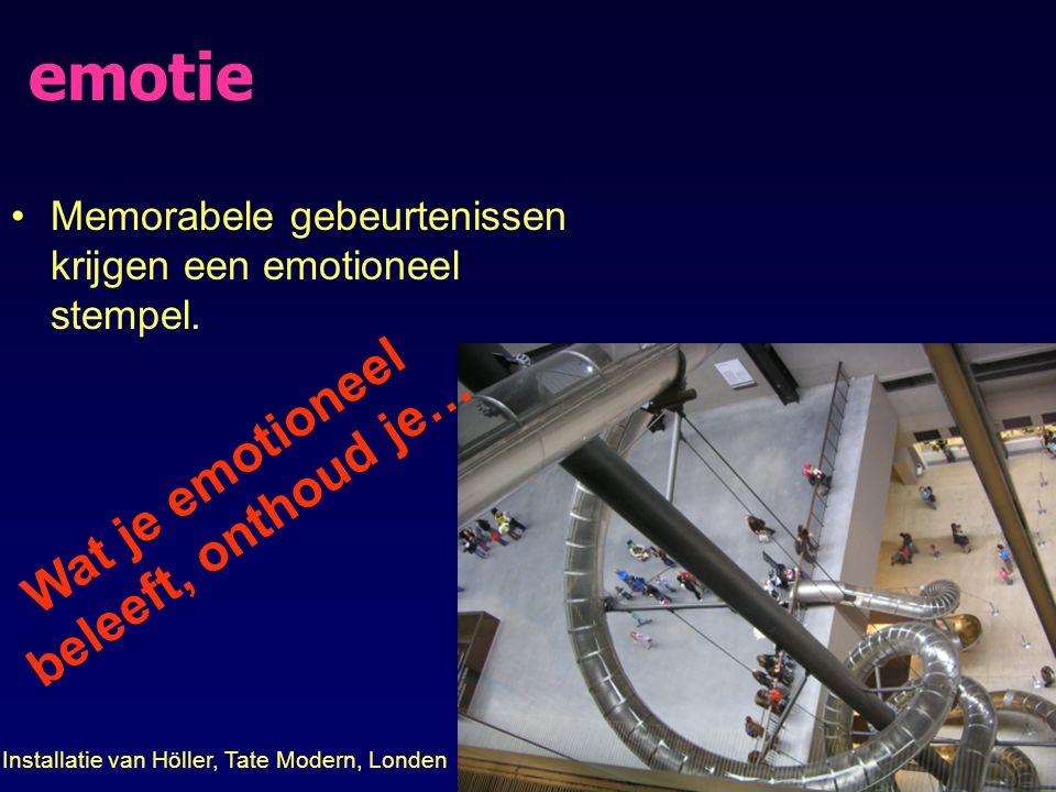 emotie Memorabele gebeurtenissen krijgen een emotioneel stempel. Wat je emotioneel beleeft, onthoud je… Installatie van Höller, Tate Modern, Londen