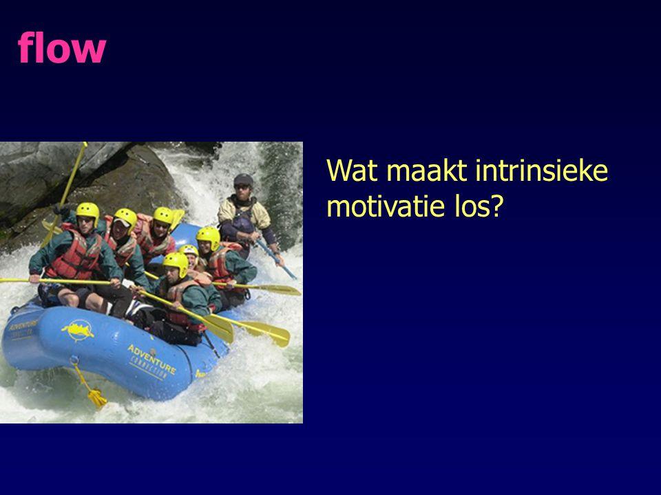 flow Wat maakt intrinsieke motivatie los?