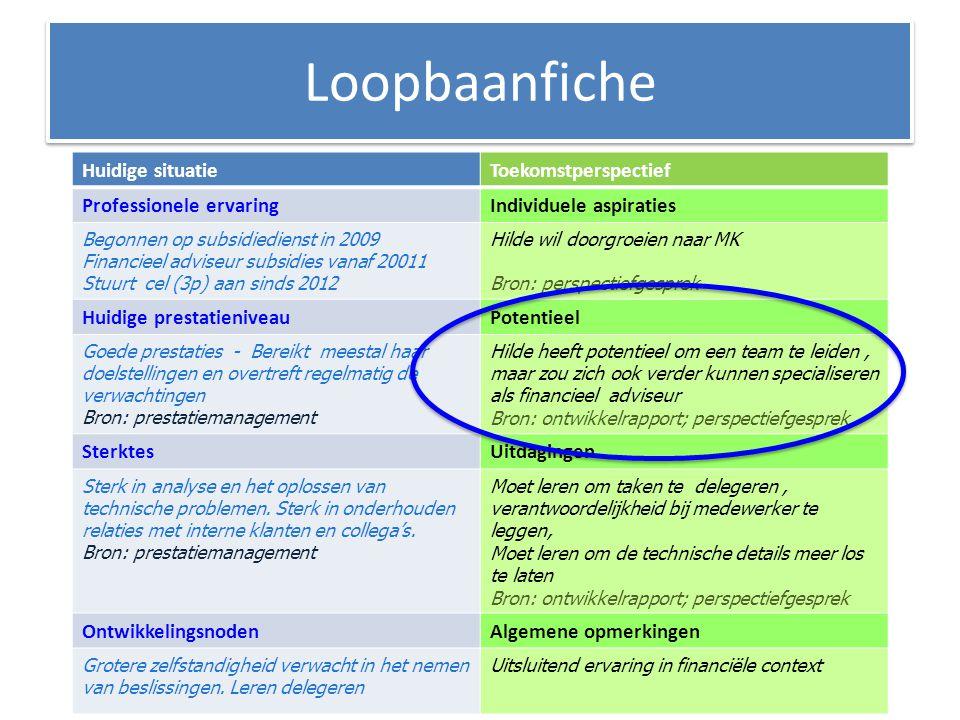 Huidige situatieToekomstperspectief Professionele ervaringIndividuele aspiraties Begonnen op subsidiedienst in 2009 Financieel adviseur subsidies vana