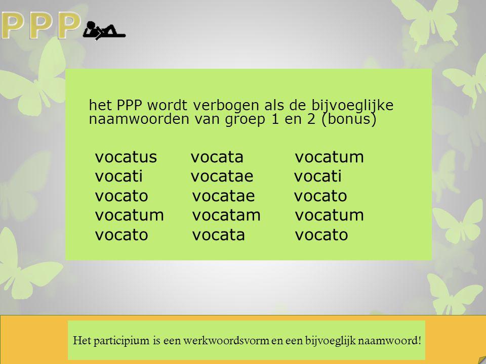 Het participium is een werkwoordsvorm en een bijvoeglijk naamwoord! het PPP wordt verbogen als de bijvoeglijke naamwoorden van groep 1 en 2 (bonus) vo
