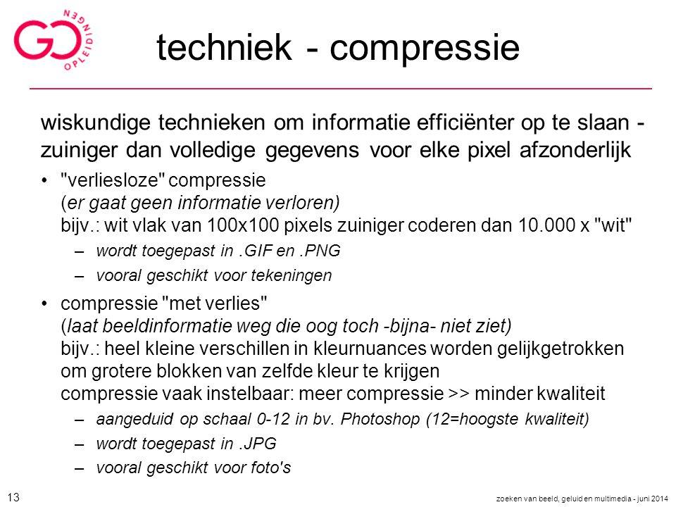 techniek - compressie wiskundige technieken om informatie efficiënter op te slaan - zuiniger dan volledige gegevens voor elke pixel afzonderlijk