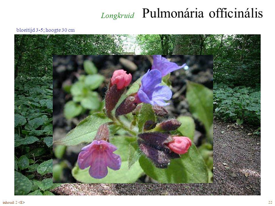 Pulmonária officinális inhoud: 2 22 Longkruid bloeitijd 3-5; hoogte 30 cm