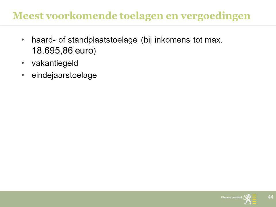 Meest voorkomende toelagen en vergoedingen haard- of standplaatstoelage (bij inkomens tot max. 18.695,86 euro ) vakantiegeld eindejaarstoelage 44