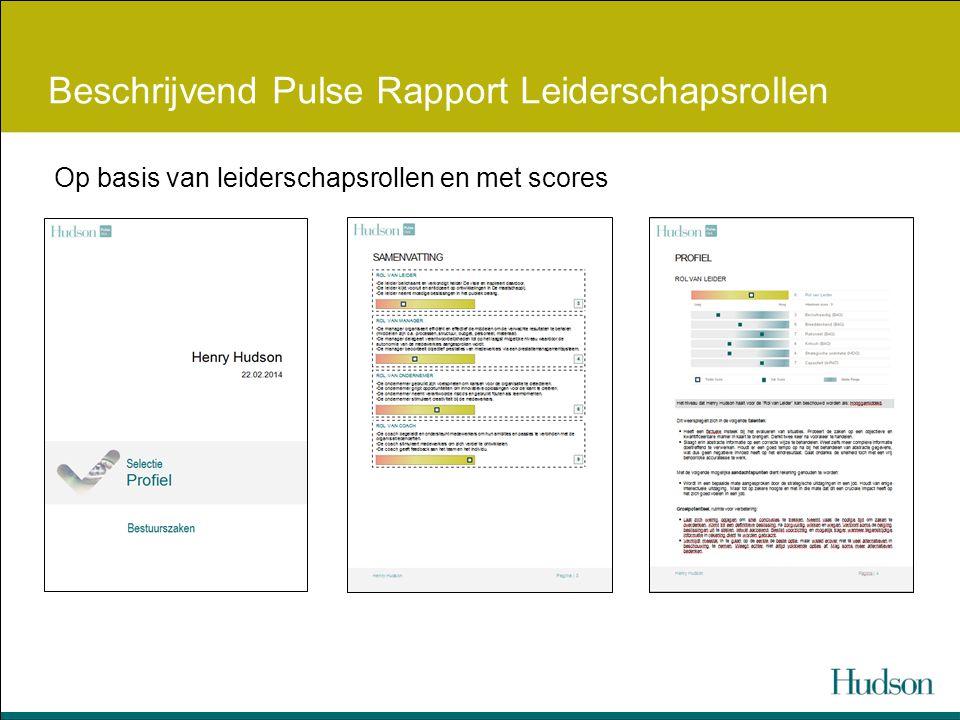 Beschrijvend Pulse Rapport Leiderschapsrollen Op basis van leiderschapsrollen en met scores