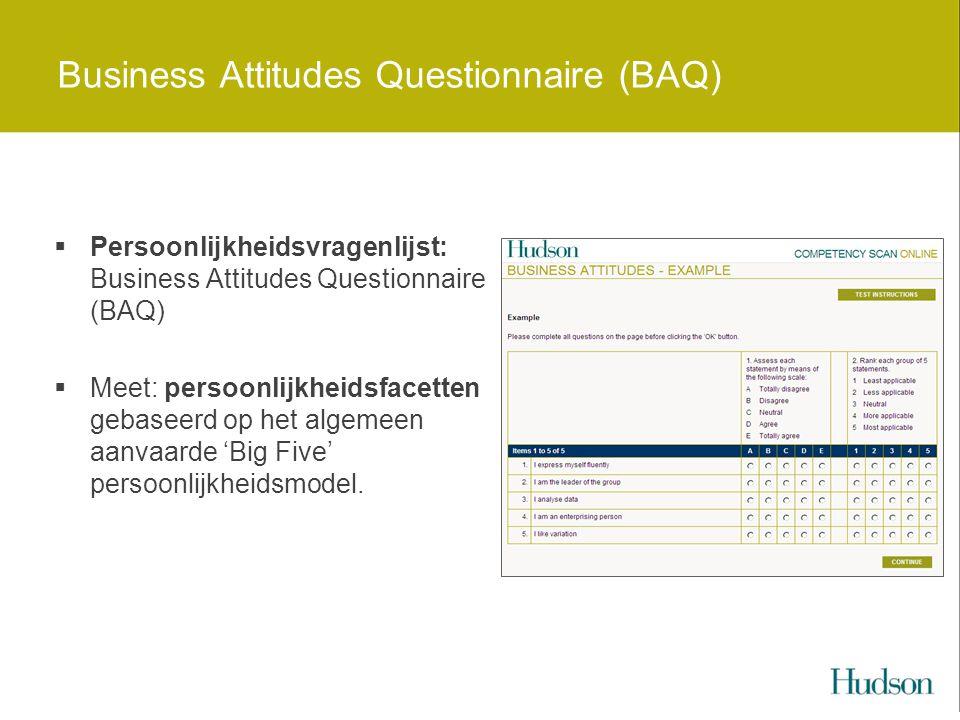 Business Attitudes Questionnaire (BAQ)  Persoonlijkheidsvragenlijst: Business Attitudes Questionnaire (BAQ)  Meet: persoonlijkheidsfacetten gebaseerd op het algemeen aanvaarde 'Big Five' persoonlijkheidsmodel.