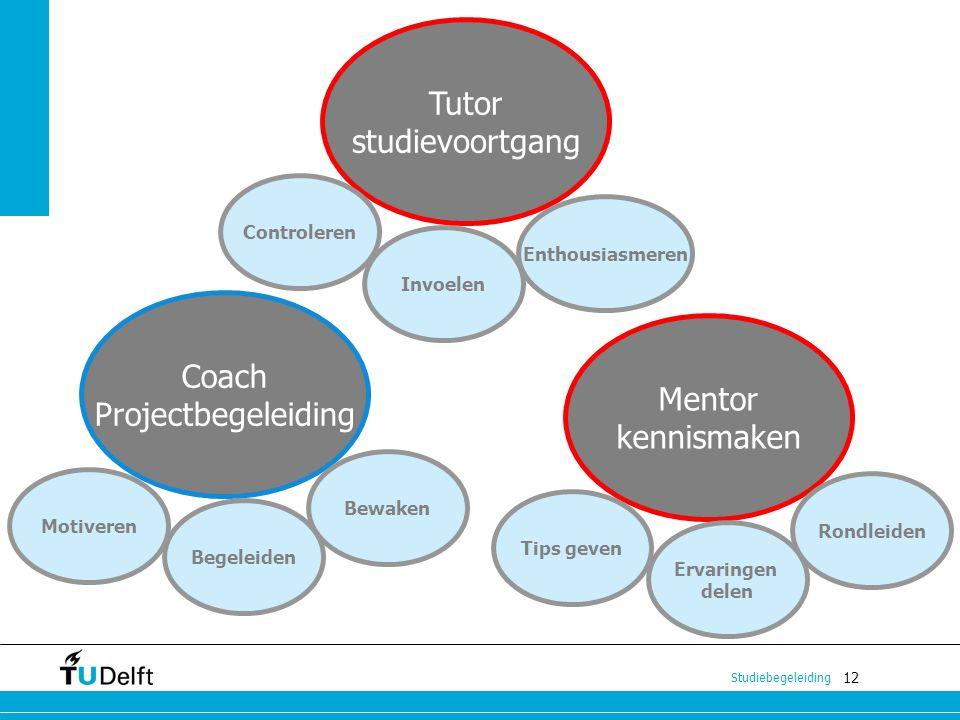 12 Studiebegeleiding Coach Projectbegeleiding Tutor studievoortgang Mentor kennismaken Enthousiasmeren Begeleiden Bewaken Motiveren Ervaringen delen T
