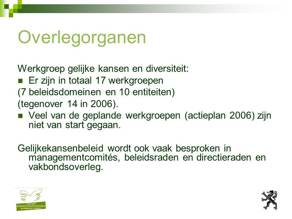 Overlegorganen Werkgroep gelijke kansen en diversiteit: Er zijn in totaal 17 werkgroepen (7 beleidsdomeinen en 10 entiteiten) (tegenover 14 in 2006).