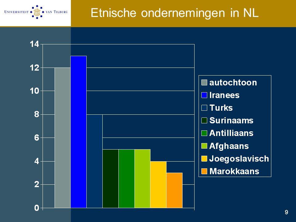 9 Etnische ondernemingen in NL
