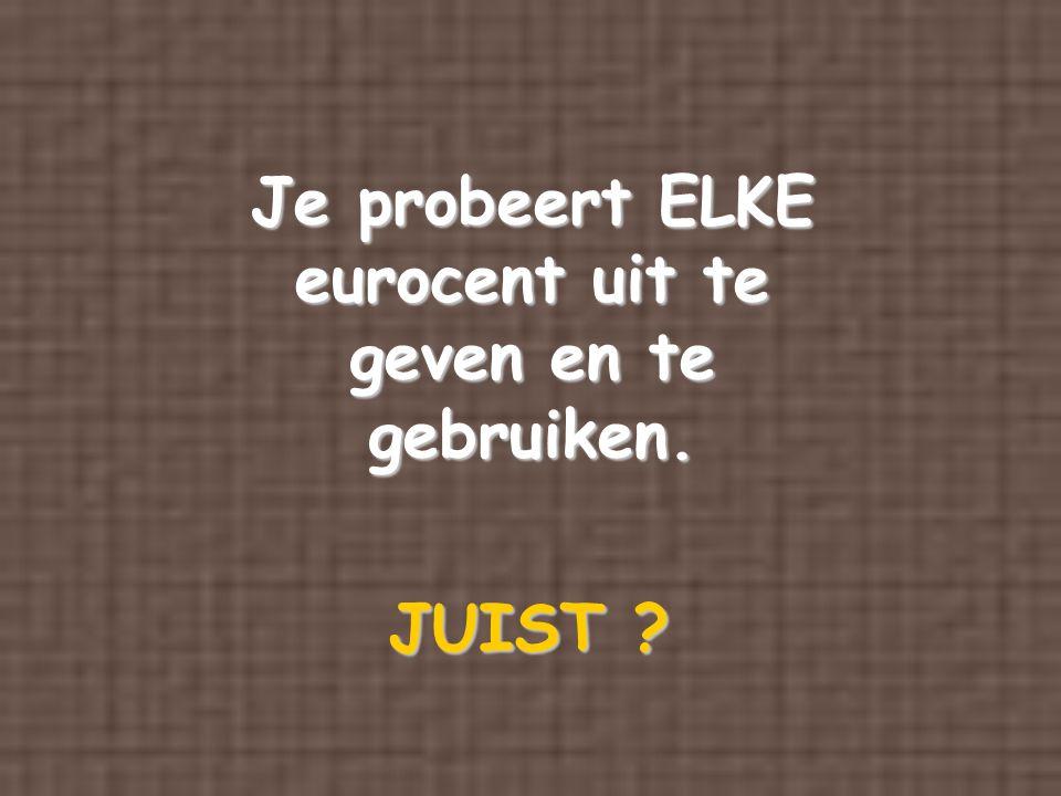Je probeert ELKE eurocent uit te geven en te gebruiken. JUIST ?