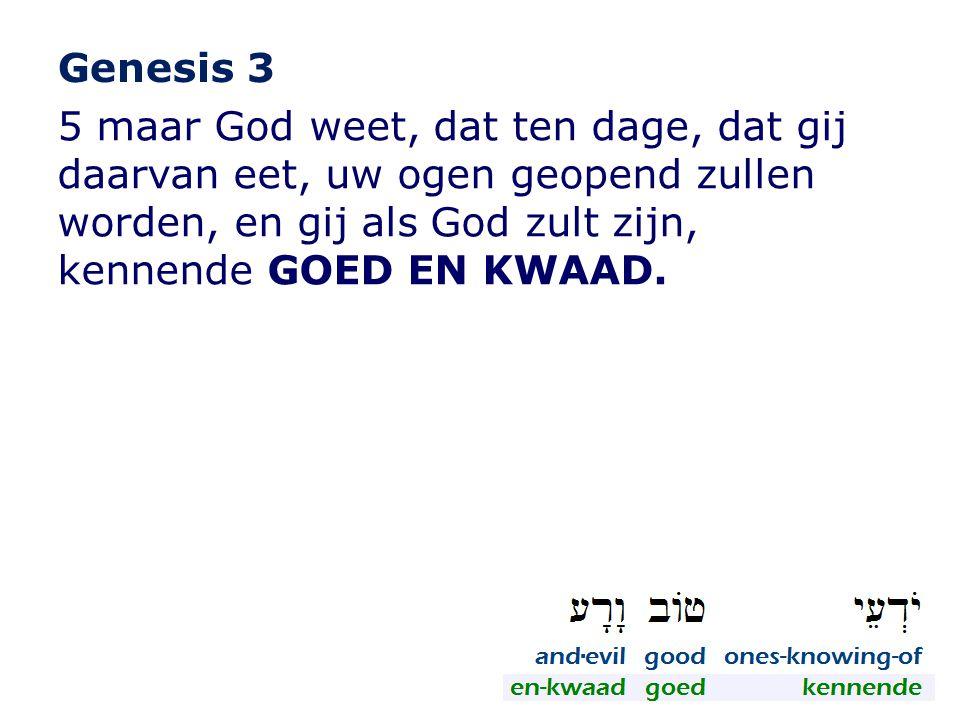 Genesis 3 5 maar God weet, dat ten dage, dat gij daarvan eet, uw ogen geopend zullen worden, en gij als God zult zijn, kennende GOED EN KWAAD.