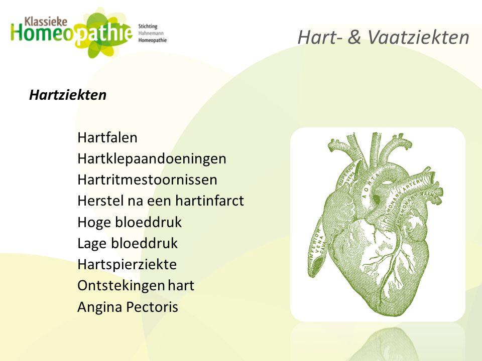 Vaatziekten Slagaderverkalking Aneurisma Trombose & Embolieën Spataders Fenomeen van Reynaud Hoog cholesterol Etalagebenen Hart- & Vaatziekten