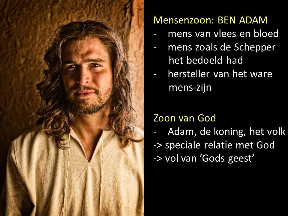 Mensenzoon: BEN ADAM -mens van vlees en bloed -mens zoals de Schepper het bedoeld had -hersteller van het ware mens-zijn Zoon van God -Adam, de koning