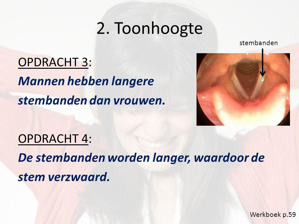 2. Toonhoogte OPDRACHT 3: Mannen hebben langere stembanden dan vrouwen. OPDRACHT 4: De stembanden worden langer, waardoor de stem verzwaard. Werkboek
