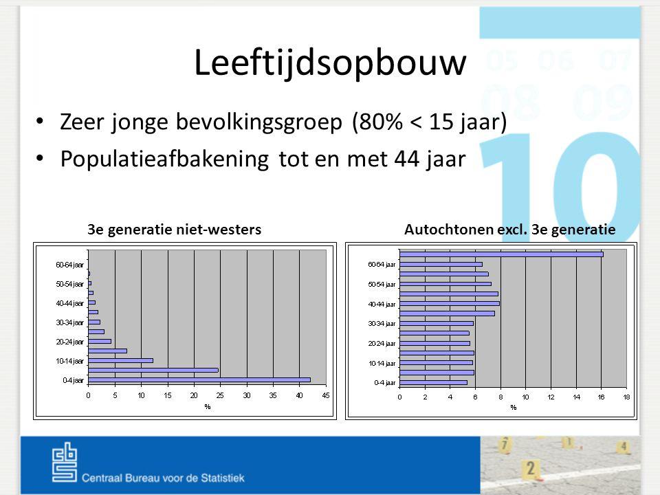 Leeftijdsopbouw Zeer jonge bevolkingsgroep (80% < 15 jaar) Populatieafbakening tot en met 44 jaar 3e generatie niet-westersAutochtonen excl. 3e genera