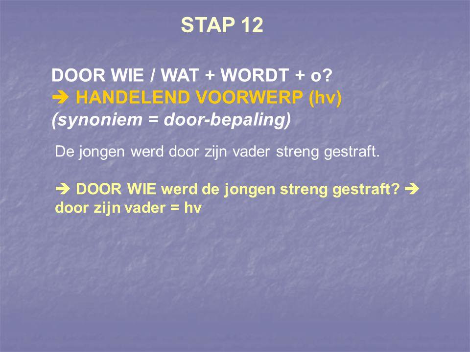 STAP 12 DOOR WIE / WAT + WORDT + o?  HANDELEND VOORWERP (hv) (synoniem = door-bepaling) De jongen werd door zijn vader streng gestraft.  DOOR WIE we