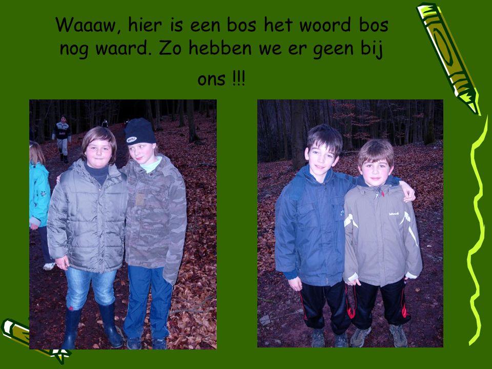 Waaaw, hier is een bos het woord bos nog waard. Zo hebben we er geen bij ons !!!