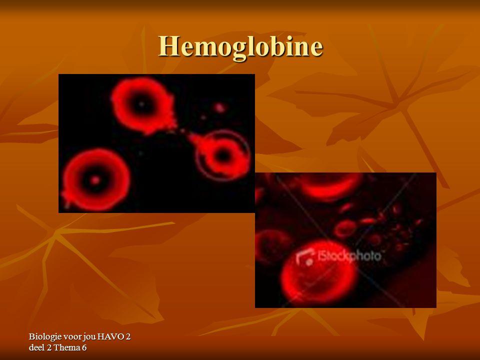 Biologie voor jou HAVO 2 deel 2 Thema 6 Hemoglobine