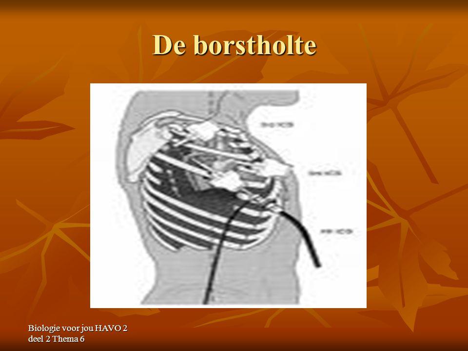 Biologie voor jou HAVO 2 deel 2 Thema 6 De borstholte
