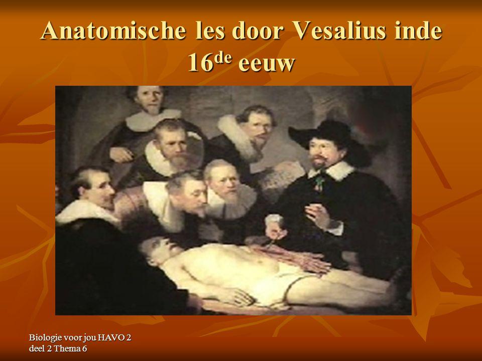 Biologie voor jou HAVO 2 deel 2 Thema 6 Anatomische les door Vesalius inde 16 de eeuw