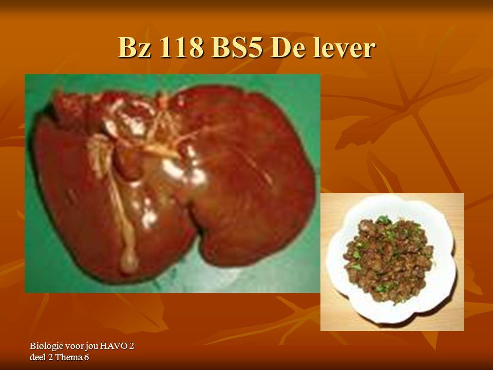 Bz 118 BS5 De lever