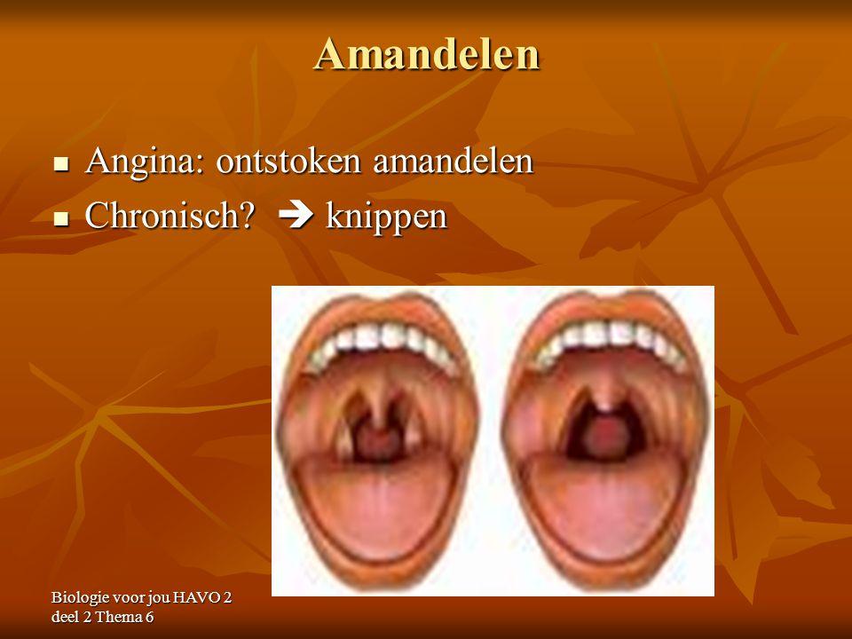 Biologie voor jou HAVO 2 deel 2 Thema 6 Amandelen Angina: ontstoken amandelen Angina: ontstoken amandelen Chronisch?  knippen Chronisch?  knippen