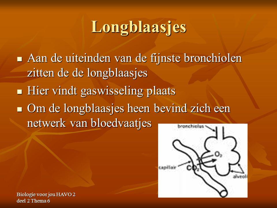 Longblaasjes Aan de uiteinden van de fijnste bronchiolen zitten de de longblaasjes Aan de uiteinden van de fijnste bronchiolen zitten de de longblaasj