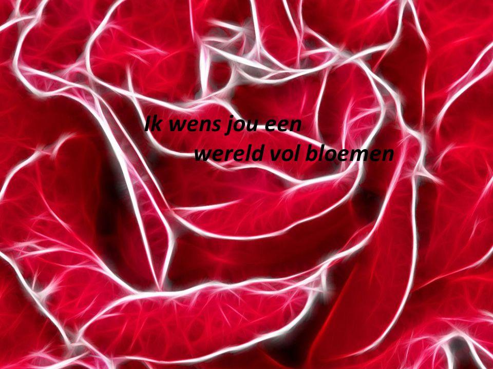 Ik wens jou een wereld vol bloemen