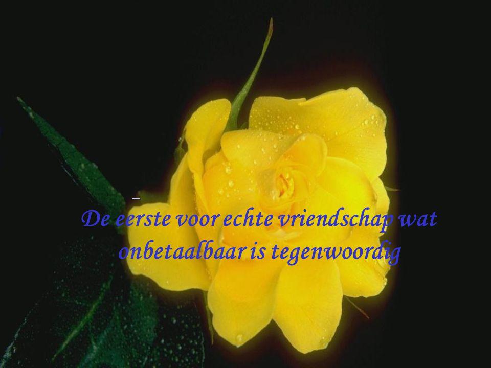 Iedere roos betekend een wens voor jou