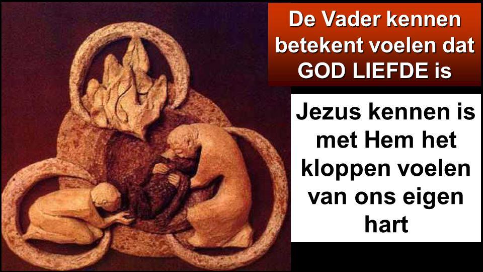 … niemand kent de Zoon tenzij de Vader, en niemand kent de Vader tenzij de Zoon en hij aan wie de Zoon het wil openbaren.