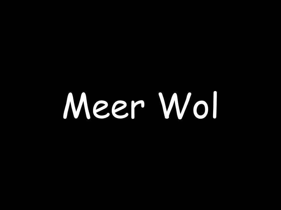 Meer Wol