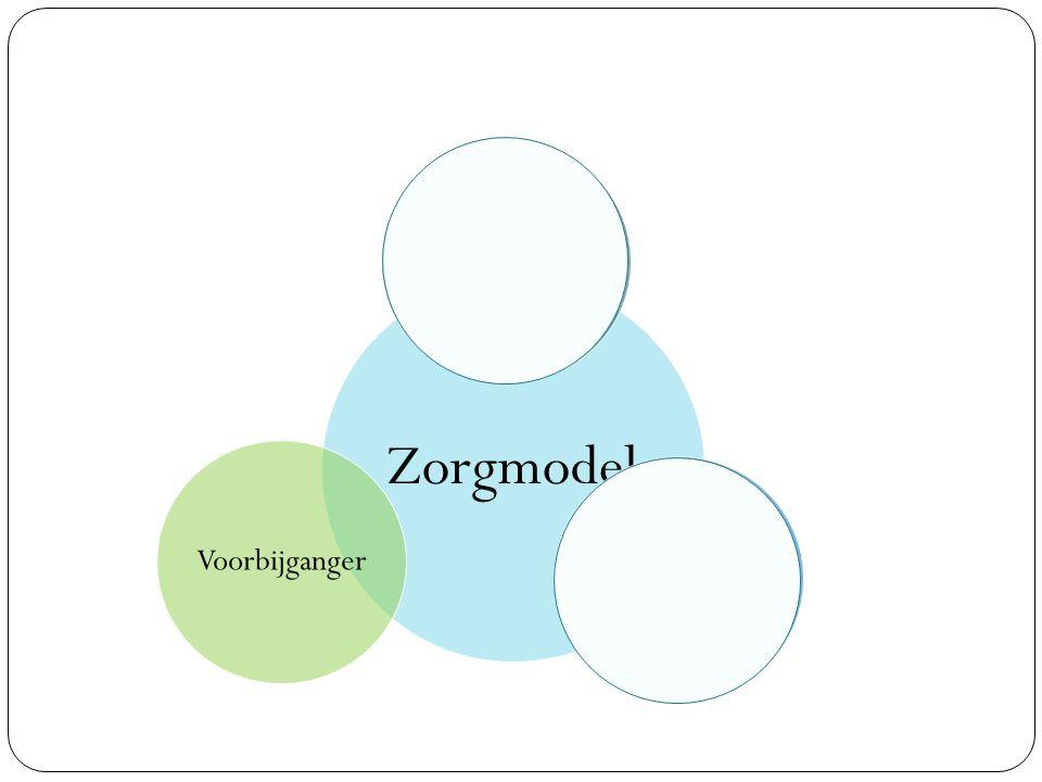 Zorgmodel ZoekerVoorbijgangerRegisseur