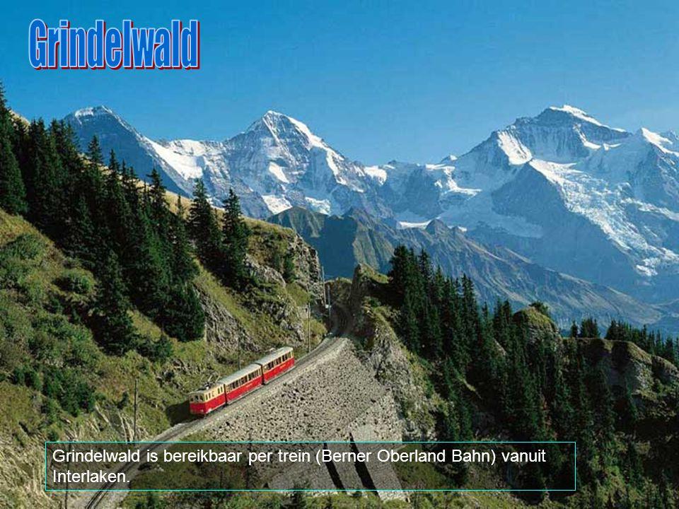 Grindelwald is een plaats in het distrikt Interlaken, in het Zwitserse kanton Bern.