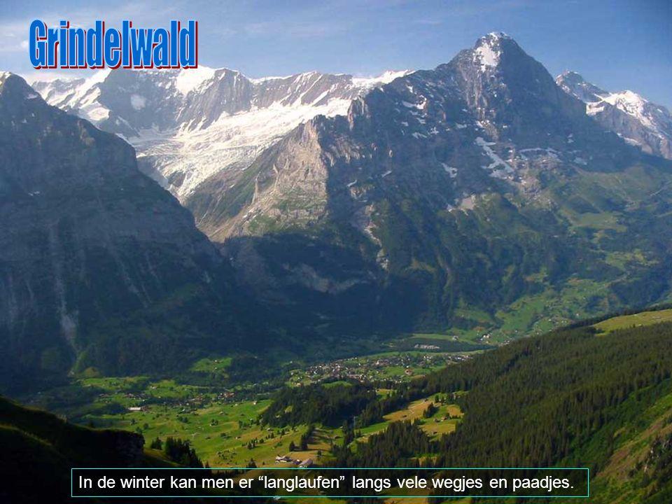 Vandaag de dag is Grindelwald gekend als een populair vakantieverblijf met vele kilometers wandelpaadjes in de Alpen.