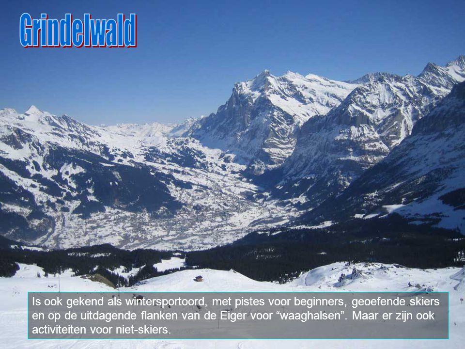 """In de winter kan men er """"langlaufen"""" langs vele wegjes en paadjes."""