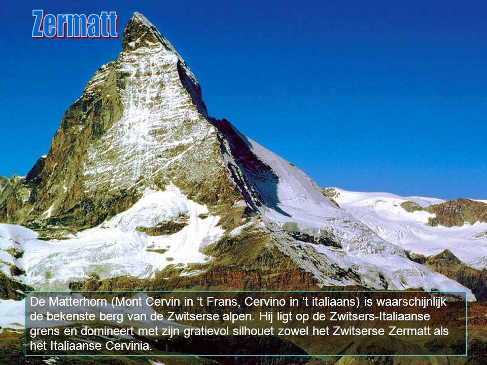 In Zermatt vindt men traditionele en eerste klasse restaurants, rustieke eethuizen, pizzarias en fast foods. Verder zijn er discoteken, schaatsbanen,