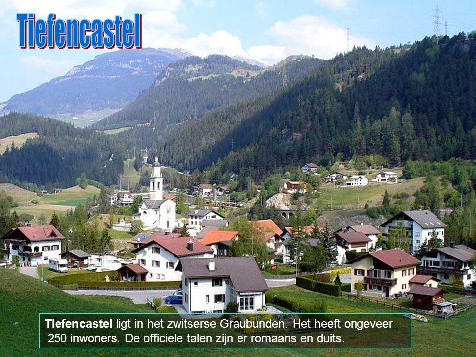 In de vallei van Zermatt zijn alle motorvoertuigen verboden; enkel wagens door paarden getrokken en elektrische wagens zijn er toegelaten.