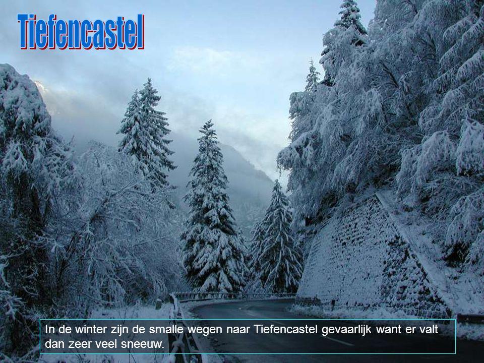 Tiefencastel heeft een oppervlakte van 14,85 km2 en een bevolkingsdichtheid van 16 inwoners per km2. Het is omringd door volgende plaatsen: Alvaneu, A
