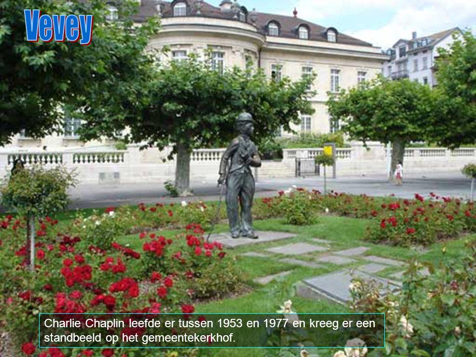 Vevey is een stadje in het Zwitserse kanton Vaud, met ongeveer 16.400 inwoners en ligt aan de oever van het meer van Genève. Het was in de oudheid gek