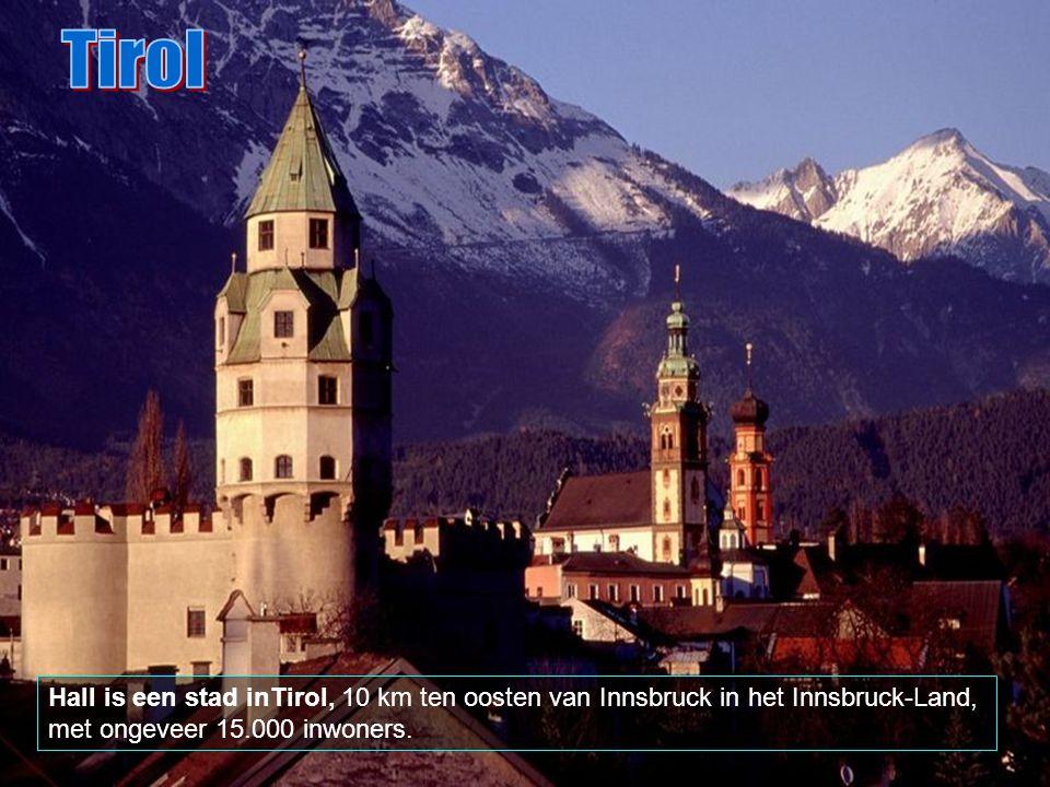Tirol is opgedeeld in negen distrikten (Bezirke) en een hoofdplaats (Statutarstadt), Insbruck.