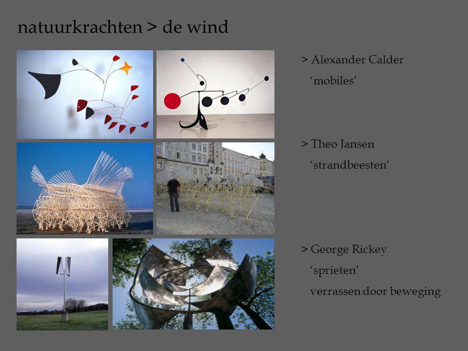 natuurkrachten > de wind > Alexander Calder 'mobiles' > Theo Jansen 'strandbeesten' > George Rickey 'sprieten' verrassen door beweging