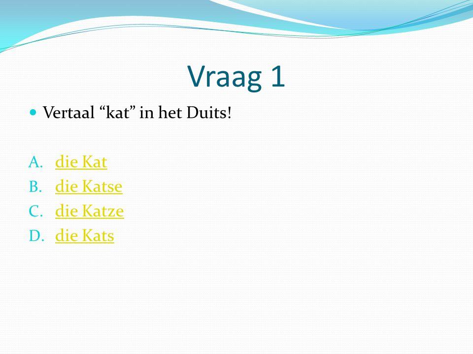 """Vraag 1 Vertaal """"kat"""" in het Duits! A. die Kat die Kat B. die Katse die Katse C. die Katze die Katze D. die Kats die Kats"""