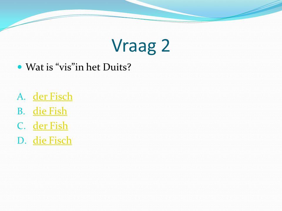 """Vraag 2 Wat is """"vis""""in het Duits? A. der Fisch der Fisch B. die Fish die Fish C. der Fish der Fish D. die Fisch die Fisch"""