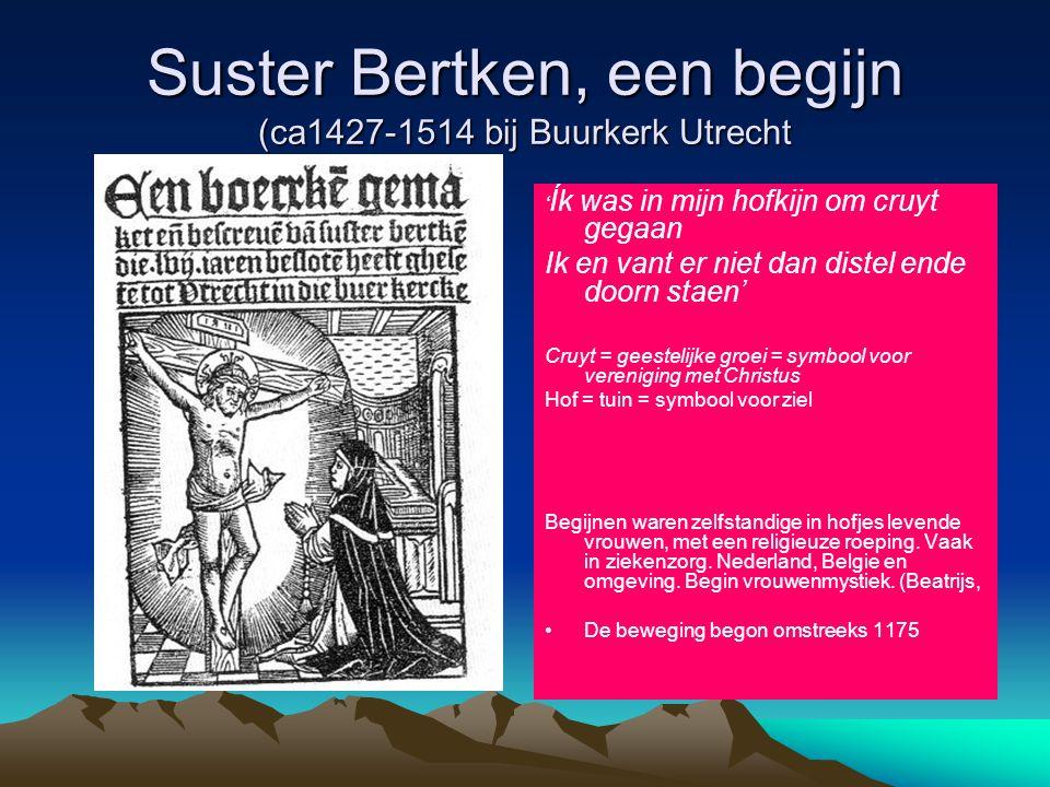 Suster Bertken, een begijn (ca1427-1514 bij Buurkerk Utrecht ' Ík was in mijn hofkijn om cruyt gegaan Ik en vant er niet dan distel ende doorn staen'