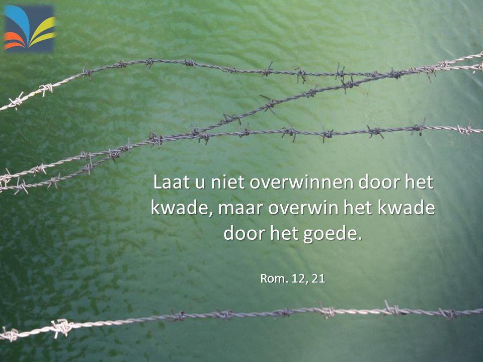 Laat u niet overwinnen door het kwade, maar overwin het kwade door het goede. Rom. 12, 21