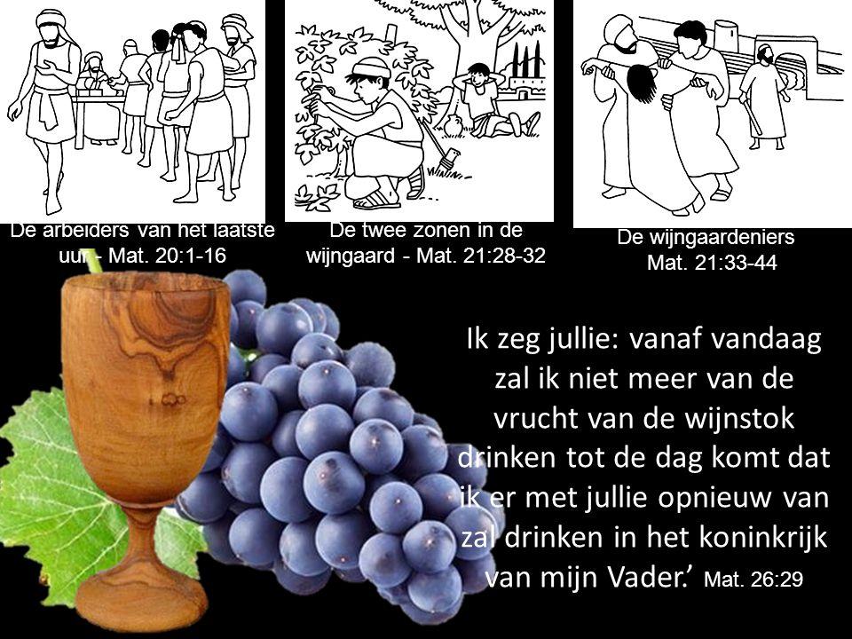 De twee zonen in de wijngaard - Mat. 21:28-32 De wijngaardeniers Mat. 21:33-44 Ik zeg jullie: vanaf vandaag zal ik niet meer van de vrucht van de wijn