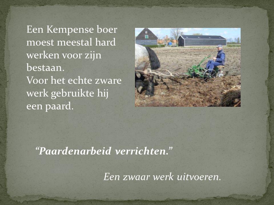 """Een Kempense boer moest meestal hard werken voor zijn bestaan. Voor het echte zware werk gebruikte hij een paard. Een zwaar werk uitvoeren. """"Paardenar"""