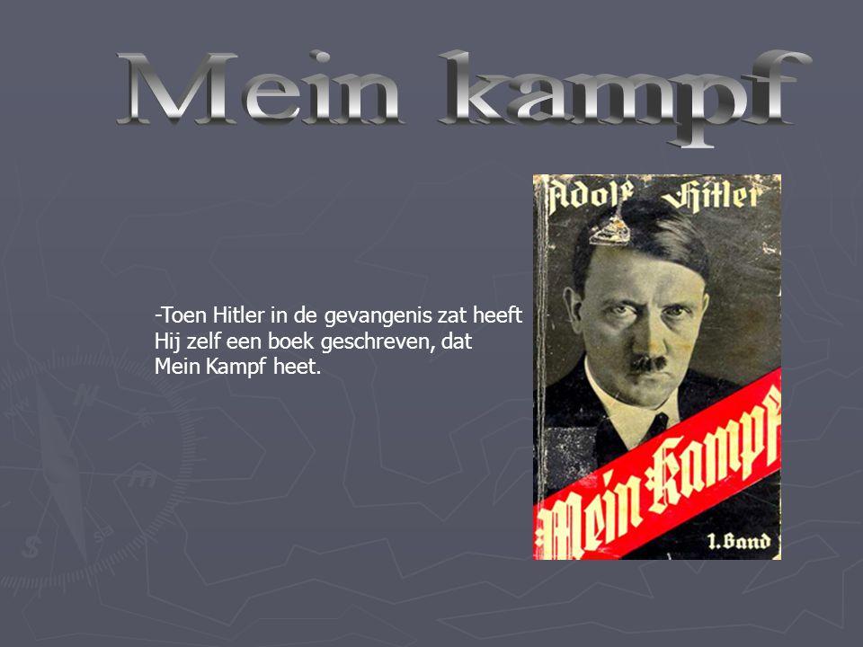 Zo denk ik er over -Een zuivel ras (geen joden, zigeuners en homo's) -Hij wou de tweede wereldoorlog winnen voor revanche van de eerste. -En hij wilde