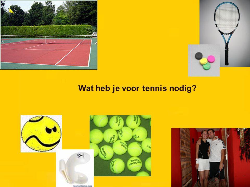 De tennisbaan: 1 1 = net 2 2 = zijlijn dubbelspel 3 = zijlijn enkelspel 3 4 = achterlijn / baseline 4 5 = servicelijn 5 6 = midden-servicelijn 6 7 = middenmerk 8 = tramrails 8 7