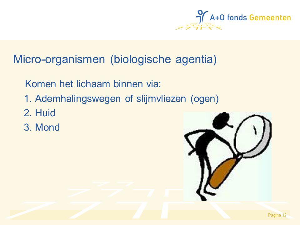 Pagina 12 Micro-organismen (biologische agentia) Komen het lichaam binnen via: 1. Ademhalingswegen of slijmvliezen (ogen) 2. Huid 3. Mond